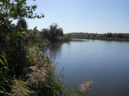 Гідрометеорологічна та водогосподарська обстановка за тиждень  в межах басейну річок Приазов'я (період з 11.06.2020 по 17.06.2020)